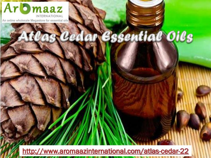 Atlas Cedar Essential Oils