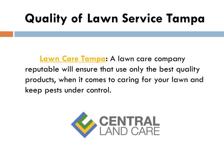 Quality of Lawn Service Tampa