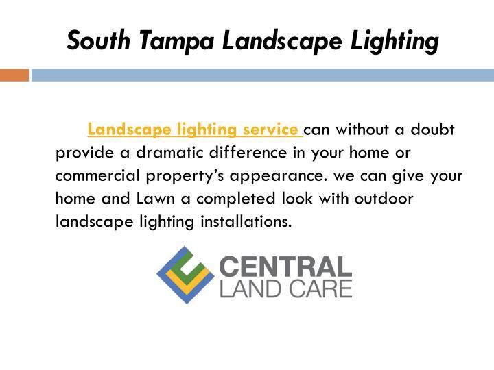 South Tampa Landscape Lighting