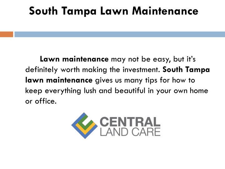 South Tampa Lawn Maintenance