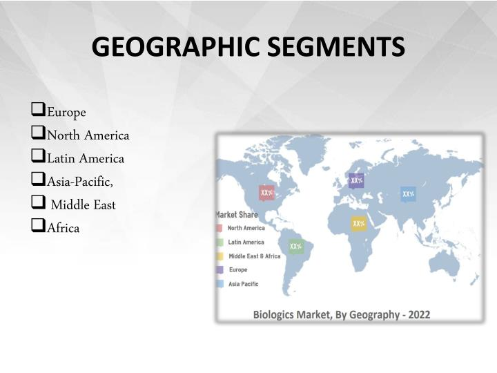 GEOGRAPHIC SEGMENTS