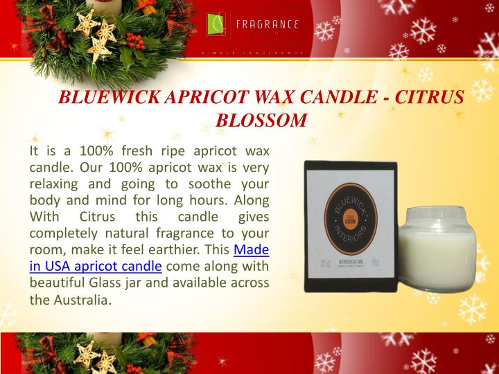 BLUEWICK APRICOT WAX CANDLE - CITRUS BLOSSOM