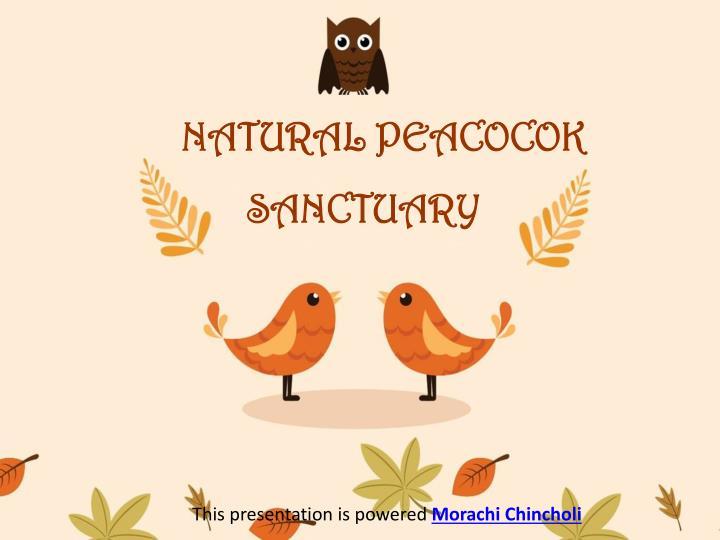 NATURAL PEACOCOK