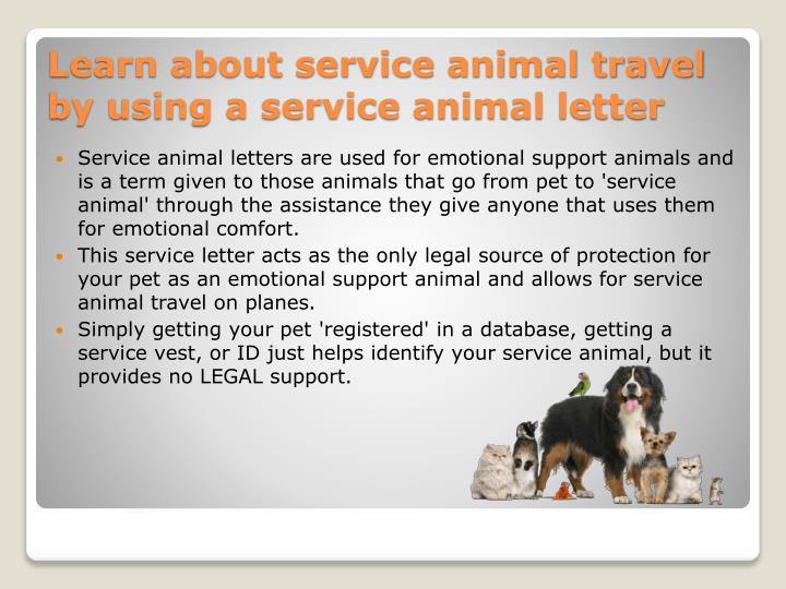 Service animal letters are used for emotional support animals and is a term given to those animals that go from pet to 'service animal' through the assistance they give anyone that uses them for emotional comfort.