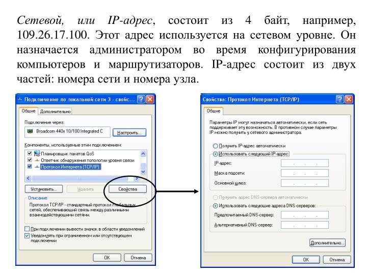 Сетевой, или IP-адрес