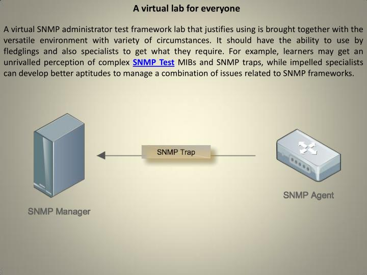 A virtual lab for everyone