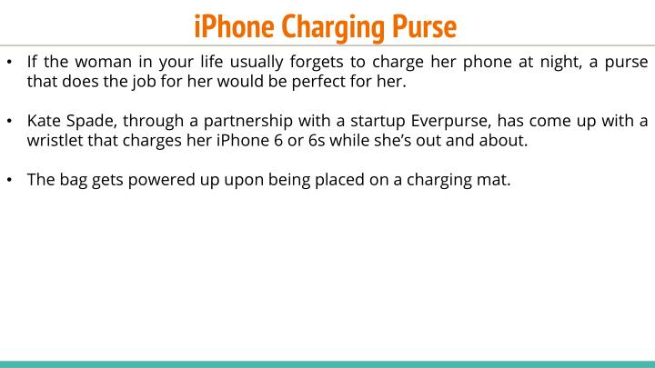 iPhone Charging Purse