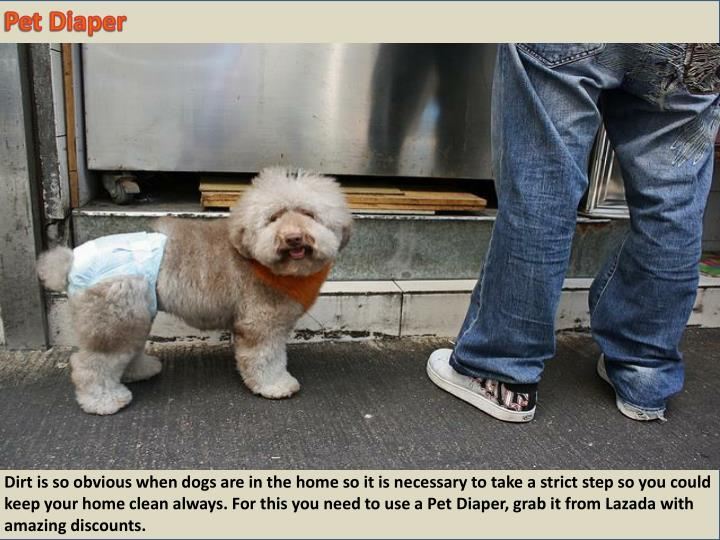 Pet Diaper