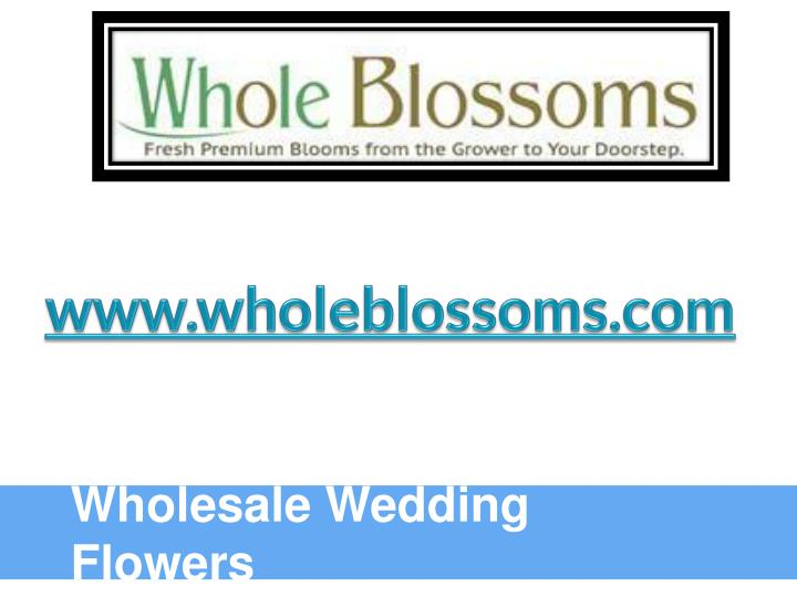Www.wholeblossoms.com