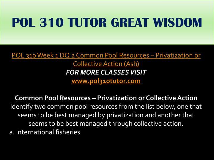 POL 310 TUTOR GREAT WISDOM