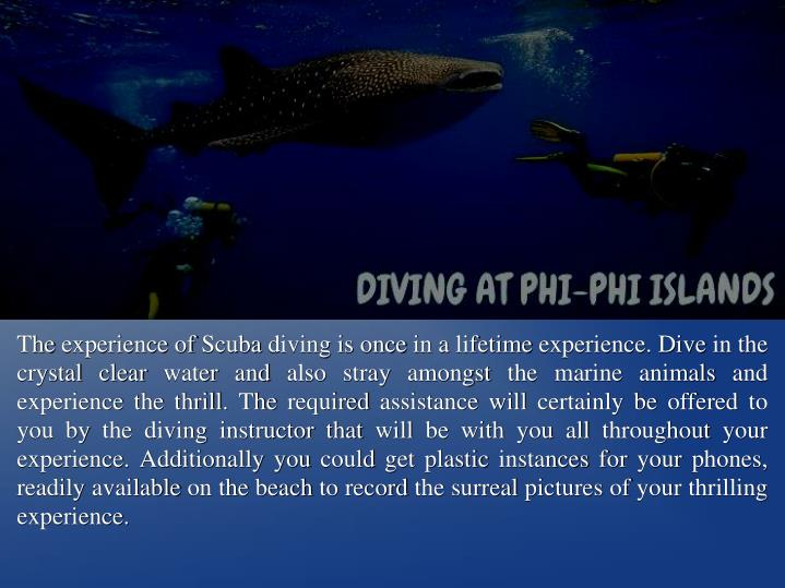The experience of Scuba diving is once in a lifetime experience. Dive in the crystal clear water and also stray amongst the marine animals and experience the thrill. The required assistance will certainly be offered to you by the diving instructor that will be with you all throughout your experience. Additionally you could get plastic instances for your phones, readily available on the beach to record the surreal pictures of your thrilling experience.