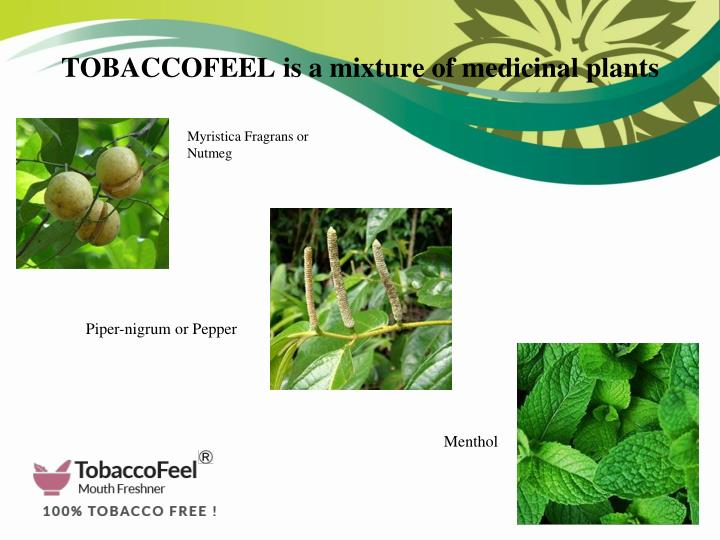 TOBACCOFEEL is a mixture of medicinal plants