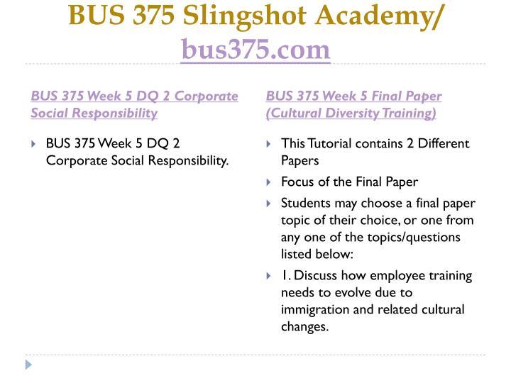 BUS 375 Slingshot Academy/
