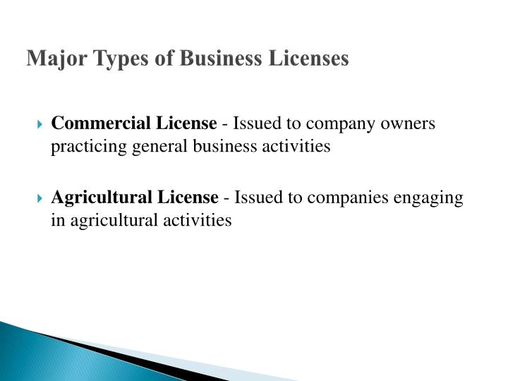 Major Types of Business Licenses