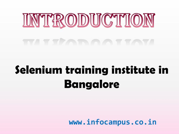 Selenium training institute in