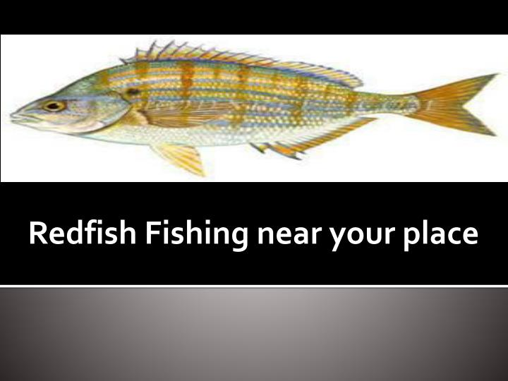 Redfish fishing near your place