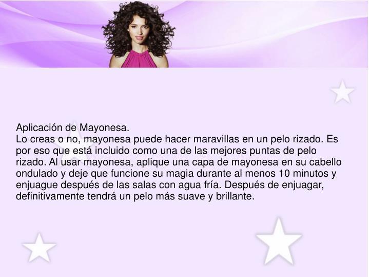 Aplicación de Mayonesa.