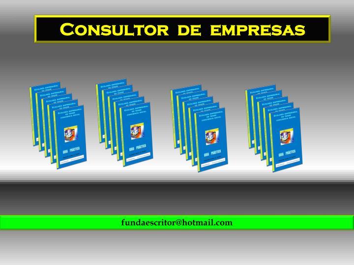 Consultor  de  empresas