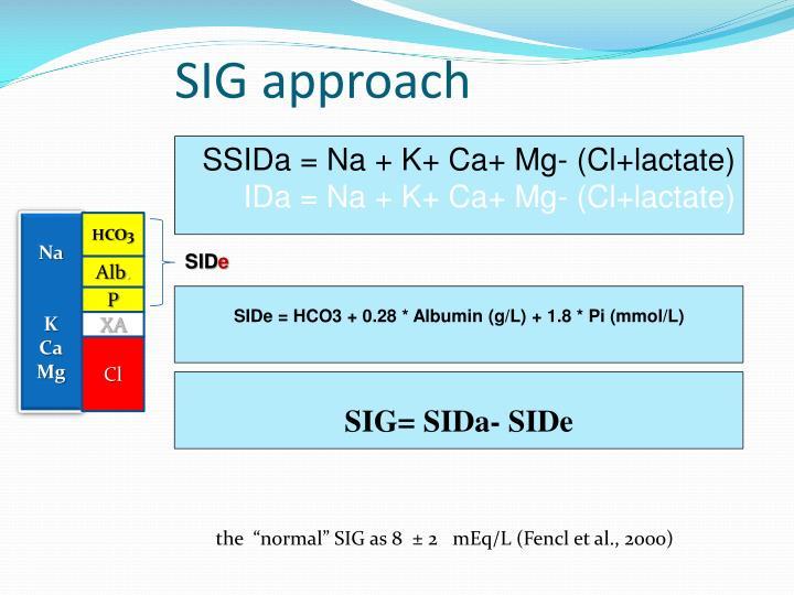 SIG approach
