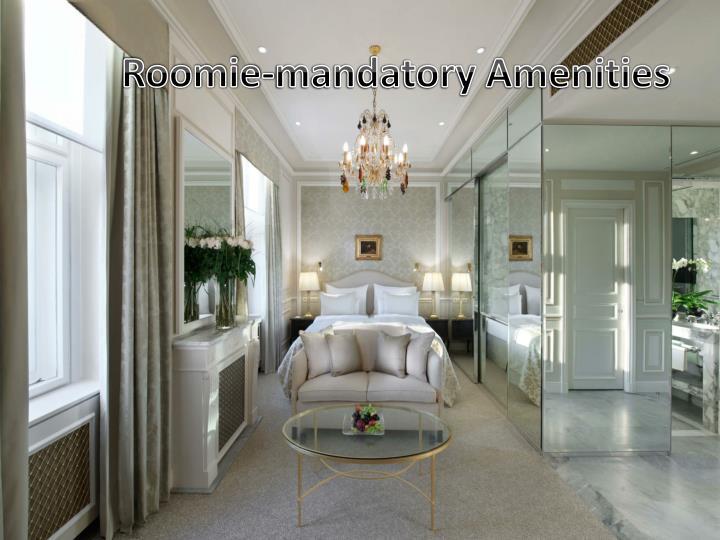 Roomie-mandatory Amenities