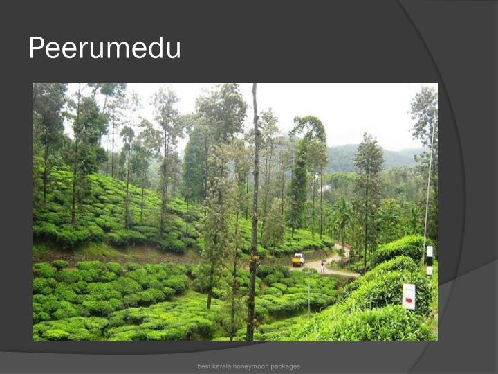Peerumedu