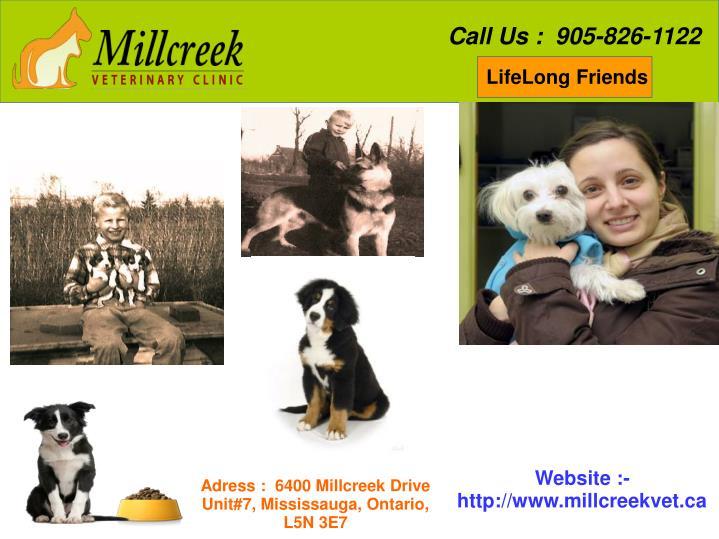 Call Us :  905-826-1122