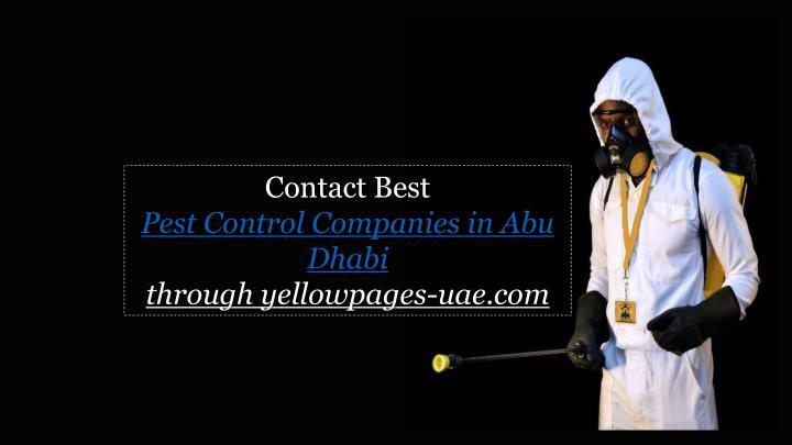 Contact Best