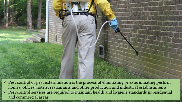 Pest control or pest extermination is the process of eliminating or exterminating pests in homes, of...