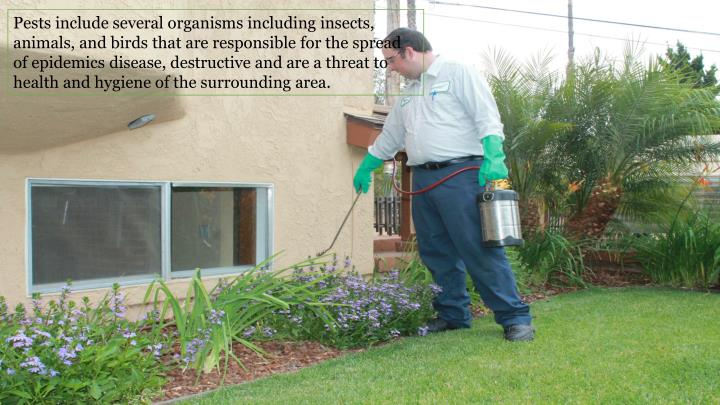 Pests include several organisms including insects, animals, and birds that are responsible for the spread of epidemics disease, destructive and are a threat to health and hygiene of the surrounding area.