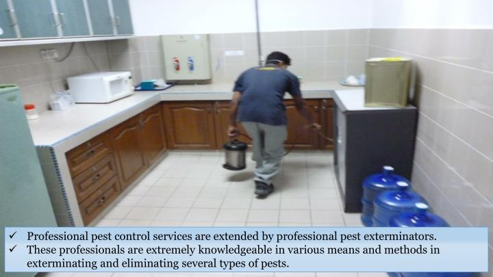 Professional pest control services are extended by professional pest