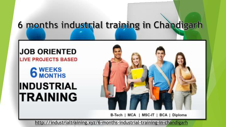 6 months industrial training in