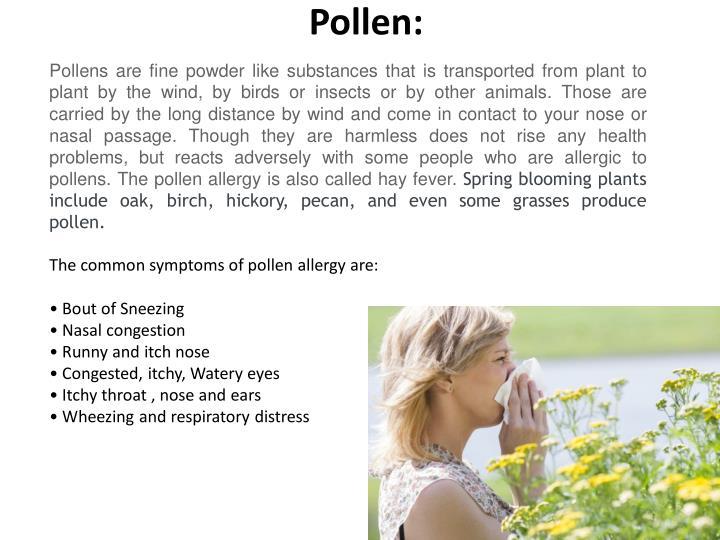 Pollen: