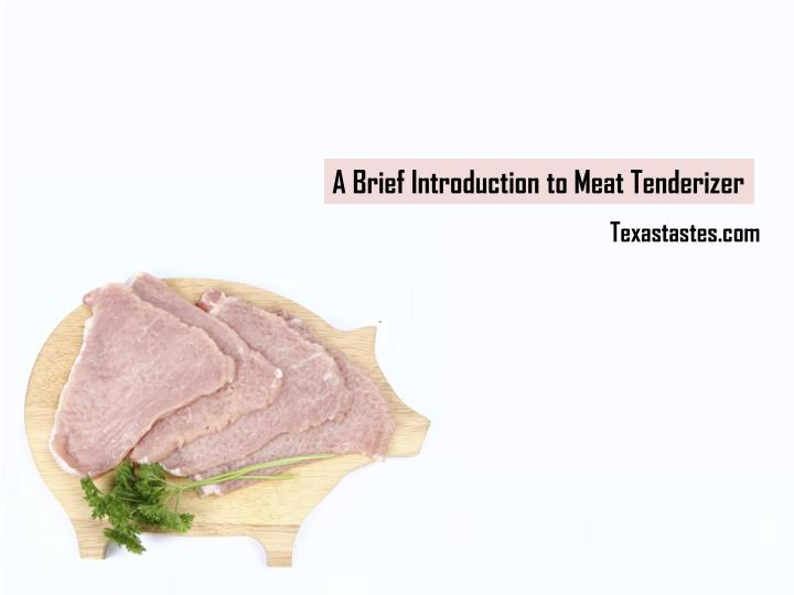 A Brief Introduction to Meat Tenderizer