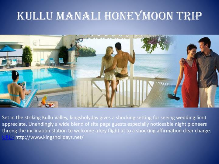 Kullu manali honeymoon trip