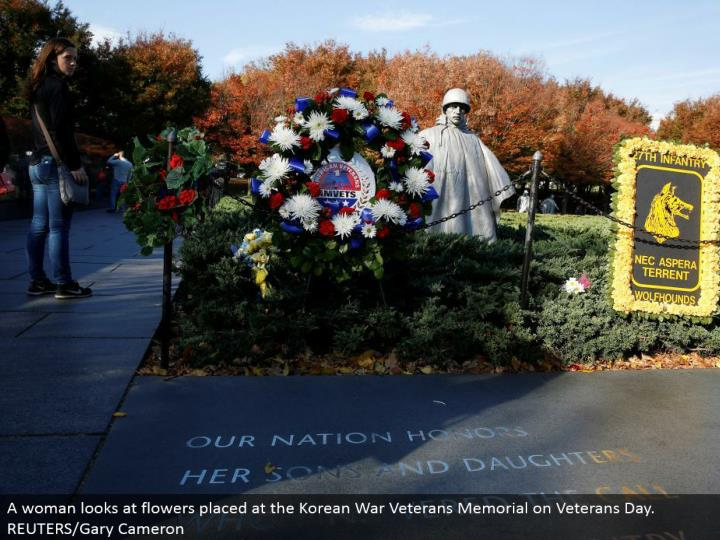 A lady takes a gander at blooms put at the Korean War Veterans Memorial on Veterans Day. REUTERS/Gary Cameron