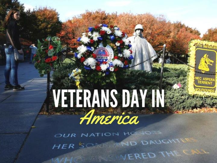 Veterans day in america