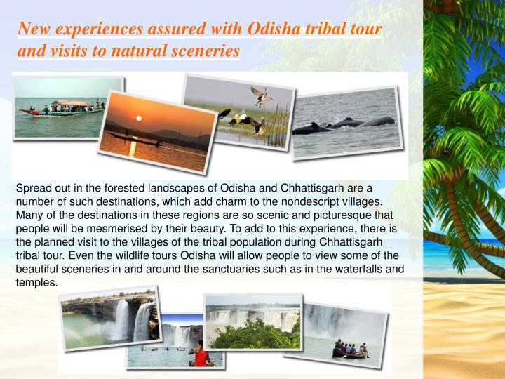 New experiences assured with Odisha tribal tour and visits to natural sceneries