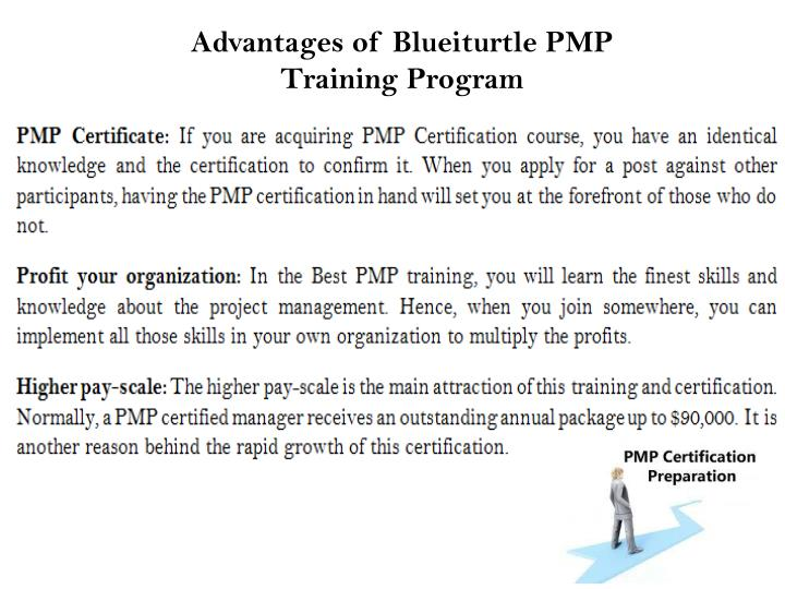 Advantages of Blueiturtle PMP Training Program