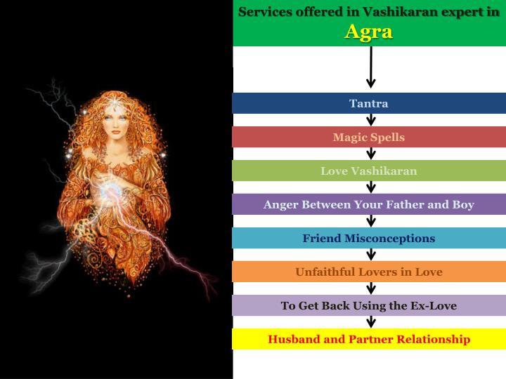 Services offered in Vashikaran expert in