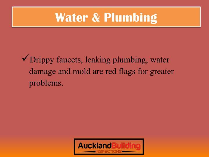 Water & Plumbing