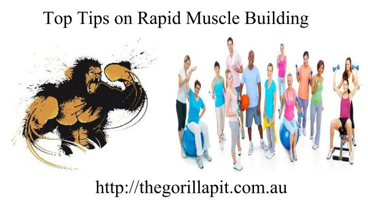 Top Tips on Rapid Muscle Building