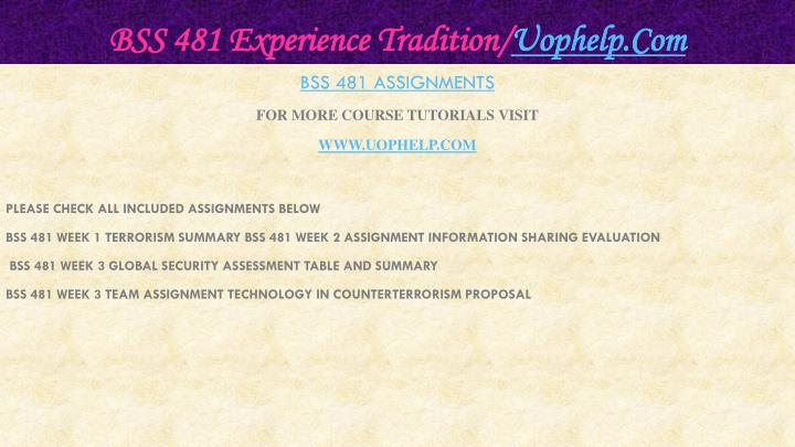 BSS 481 Experience Tradition/