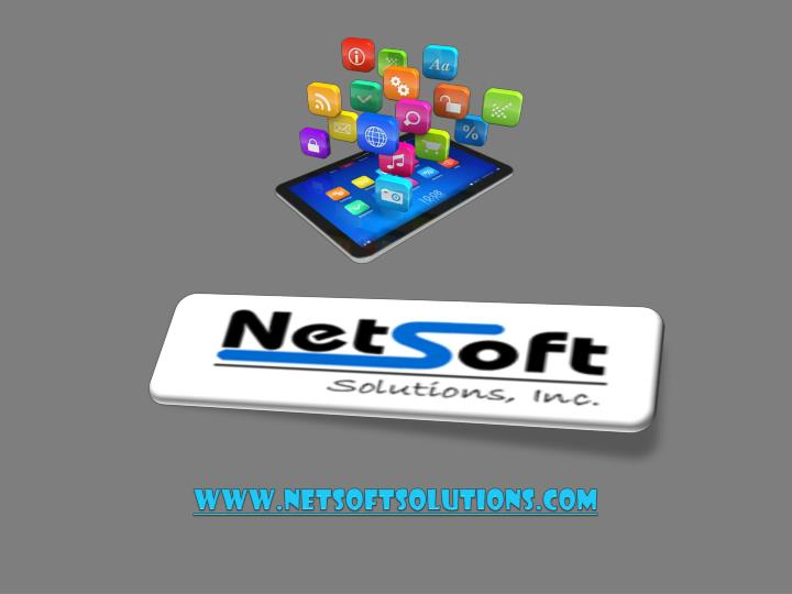 Www netsoftsolutions com