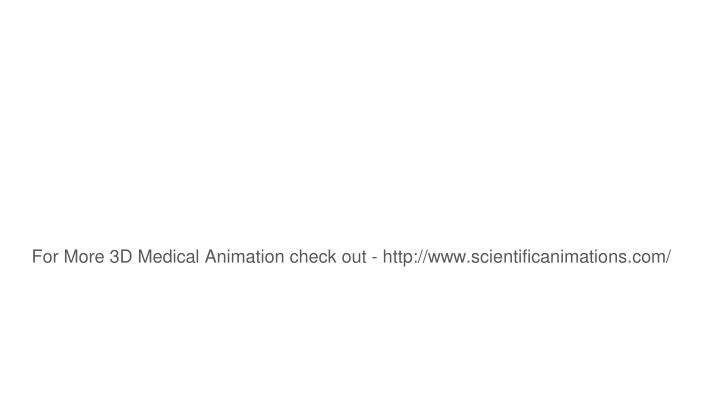 For More 3D Medical Animation check out - http://www.scientificanimations.com/