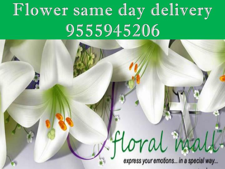 Flower same day delivery 9555945206