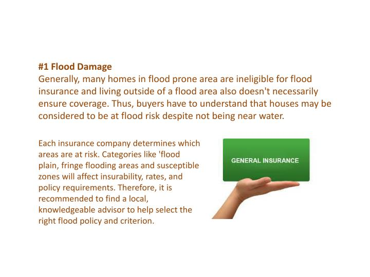 #1 Flood Damage