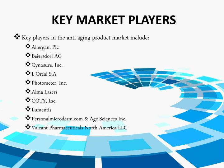 KEY MARKET PLAYERS