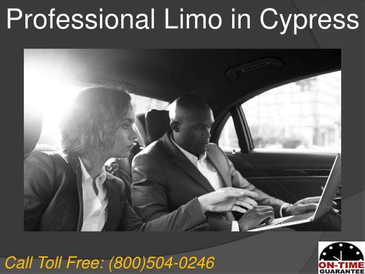 Professional Limo in Cypress