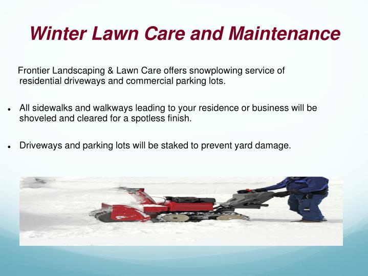 Winter Lawn Care and Maintenance