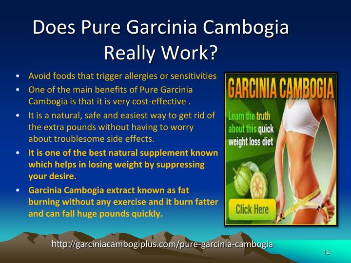 Does Pure Garcinia Cambogia Really Work?